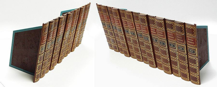 Fake Faux Book Leather Antique Spines